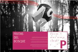 Pato-en-bosque-copy.jpg
